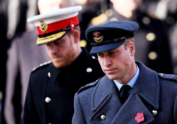 Prinssi William ja prinssi Harry kuvattuna syksyllä 2019.