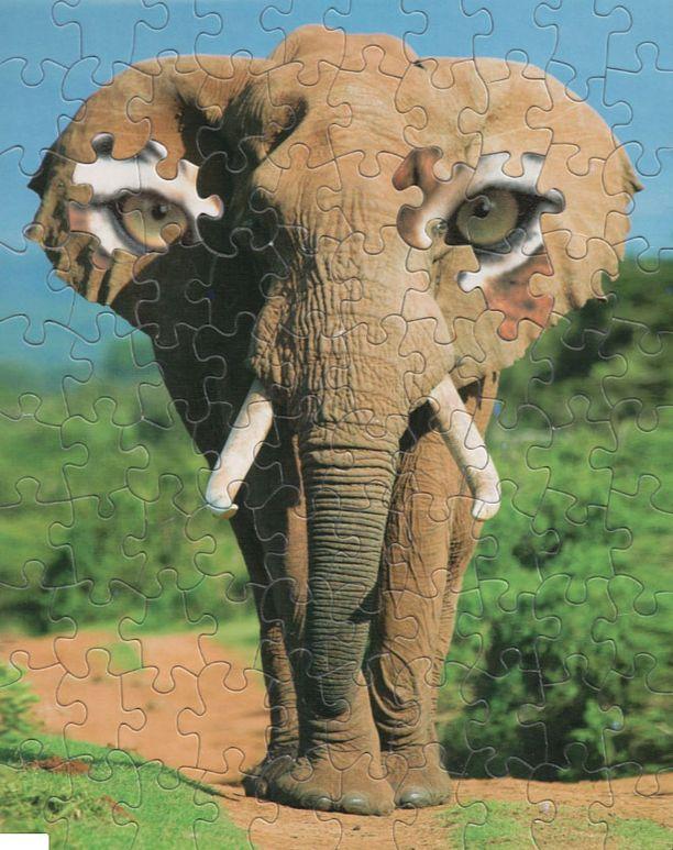 """Tämä on """"Kaikkinäkevä elefantti""""."""