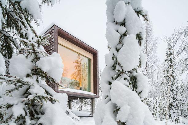 Arctic TreeHouse Hotelia on ihailtu kansainvälisissä design- ja arkkitehtuurilehdissä.