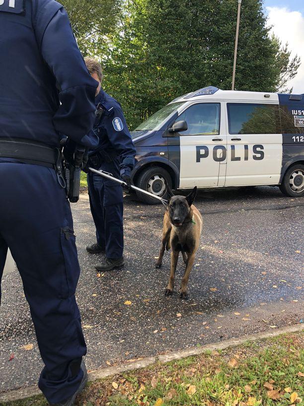 Poliisi toimitti koiran väliaikaiseen hoitopaikkaan.