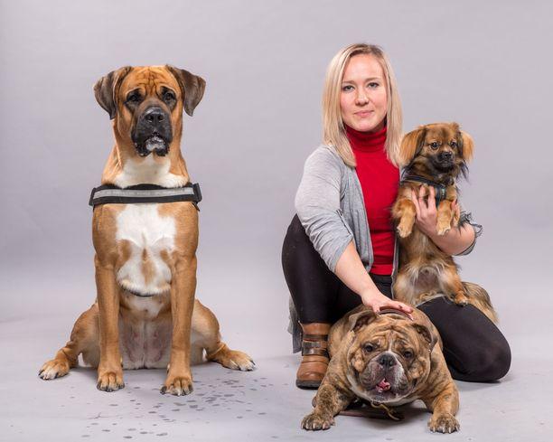 Sini Ketonummi tekee muiden SSEY:n aktiivien kanssa arvokasta työtä eläinten eteen. Yhdistyksestä kodin saaneisiin rescue-koiriin kuuluvat muun muassa Aino (vas.), Tauno ja Max (Sinin sylissä).