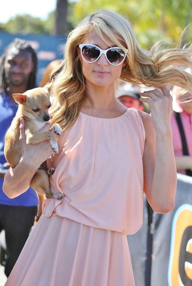 Seurapiirikaunotar Paris Hilton koiransa Peter Panin kanssa.