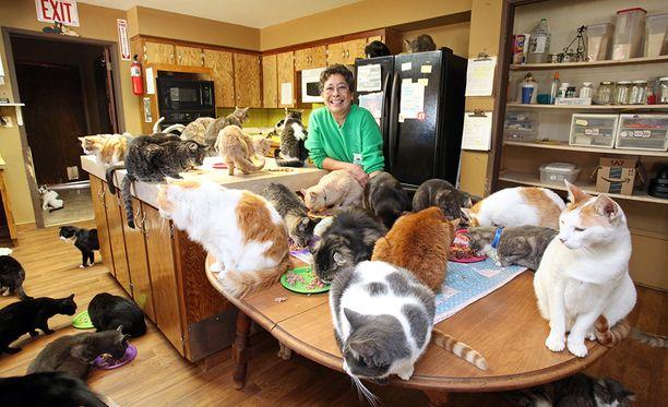 Kun Lynea oli pieni, hän ei saanut ottaa kissaa, vaikka piti niistä kovasti.