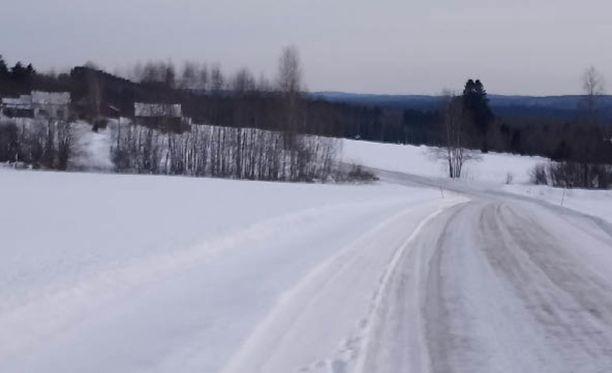 Kuva on otettu Rantasalmen Osikonmäen suunnitellulta kaivosalueelta.