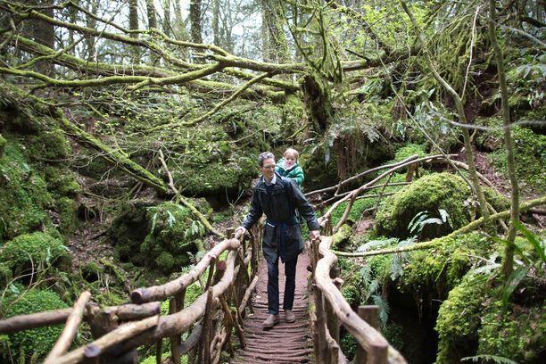 Puzzlewoodin metsä kiehtoo mielikuvitusta, ja on siksi suosittu kuvauspaikka.
