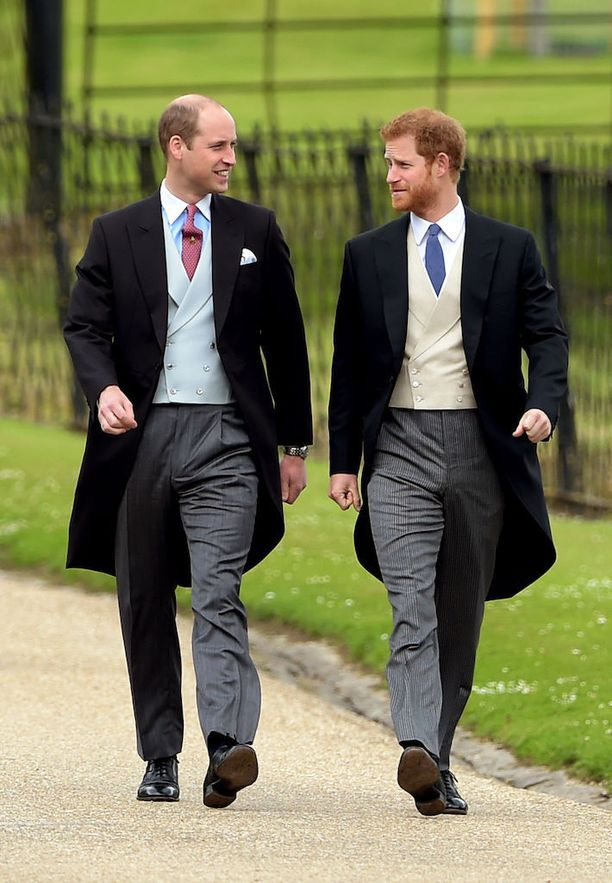 Prinssit William ja Harry.