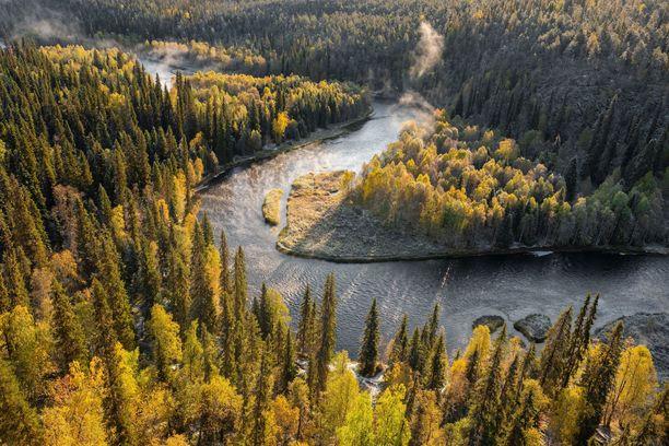 Oulangan kansallispuiston suosittu maisemapaikka Pähkänänkallio pyrittiin tänä vuonna rauhoittamaan liikenteeltä, sillä lähellä pesii harvinainen muuttohaukka. Nyt kalliolle voi taas mennä pällistelemään hienoa maisemaa.