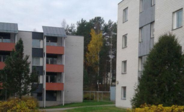 Pirkko ja Juha Haapsaari tarjosivat vuokra-asuntoa omistamistaan kerrostaloista Mikkelin Ristiinasta Pellosniemeltä.