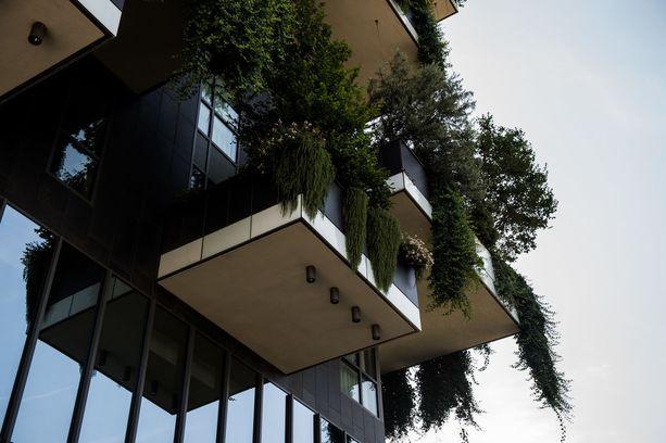 Kaikkien asuntojen parvekkeilla on vihreää.