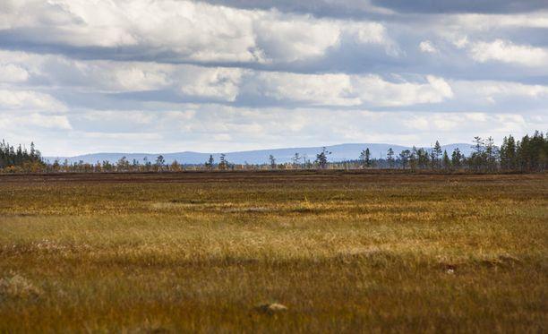 Nikkeliesiintymä on Viiankiaavan Natura-alueella Sodankylässä.