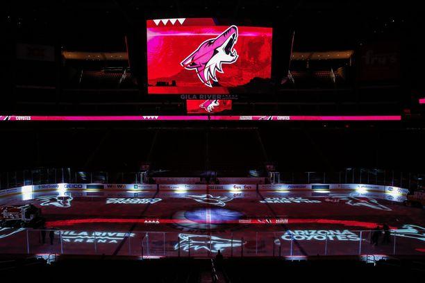 Coyotes-logo koristaa ensi vuonna jonkin toisen hallin .