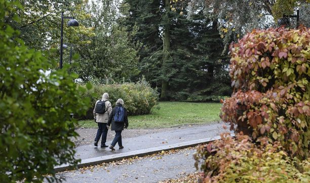 Kaupunkien viheralueiden merkitys on korostunut läheisten tapaamispaikkoina. Kuva Helsingin Töölönlahdelta.