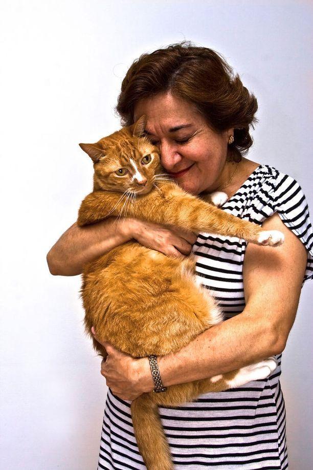 Gattara tässä huolentii kodittomasta kissaeläimestä.