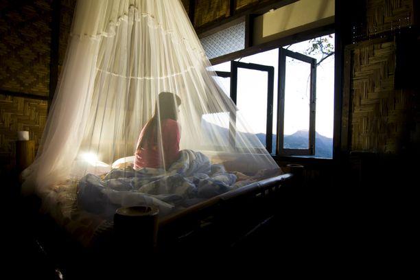 Jos haluat nukkua ikkuna auki lämpimänä kesäyönä, vuoteen peittävä harsomainen verkko on tarpeen.