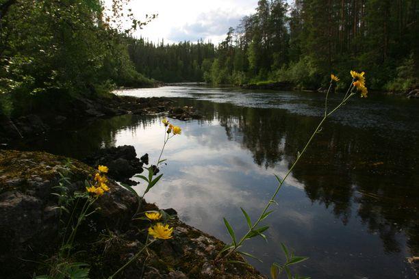 Jokimaisemaa Kuusamossa. Kuvituskuva.