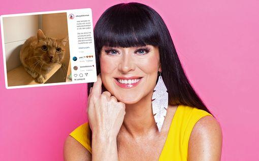 Ellen Jokikunnas pelasti nälkiintyneen ja paleltuneen kissan – taustalla sydäntäsärkevä tarina