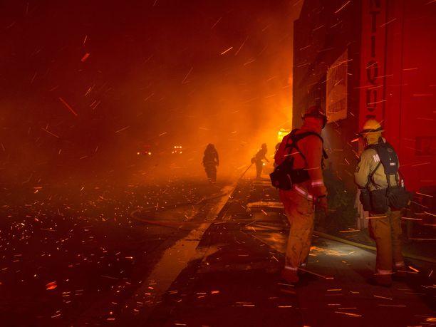 Tältä Paradisessa näytti viime torstaina, kun palokunta ei kyennyt pysäyttämään Campin palon etenemistä.