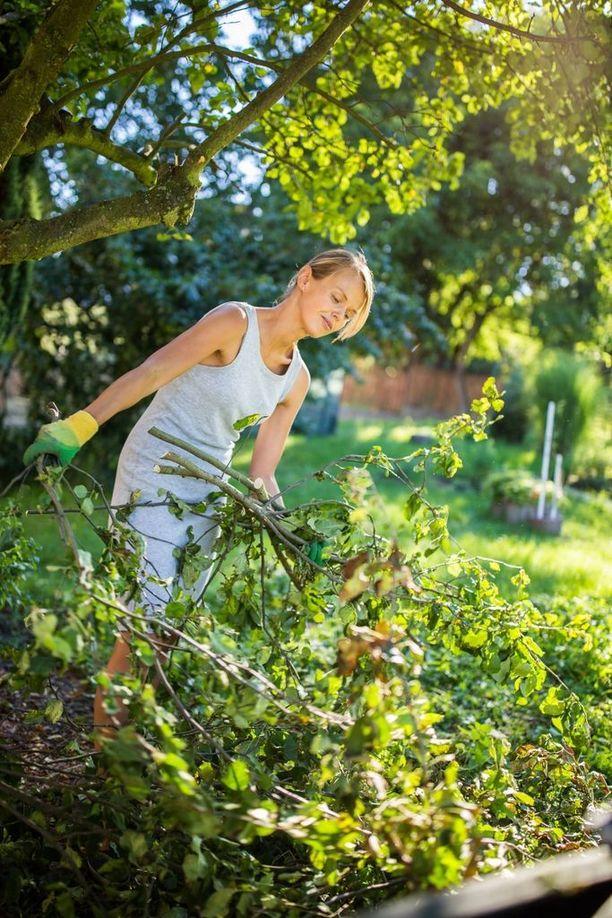 Puutarhatöissä kannattaa käyttää suojalaseja.
