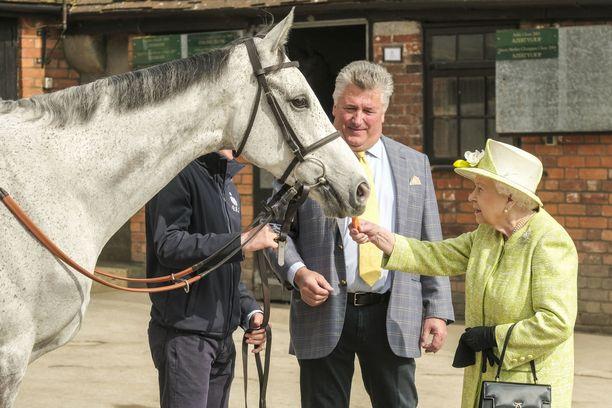Kuningatar syötti kimolle hevoselle porkkanaa tallivierailulla.