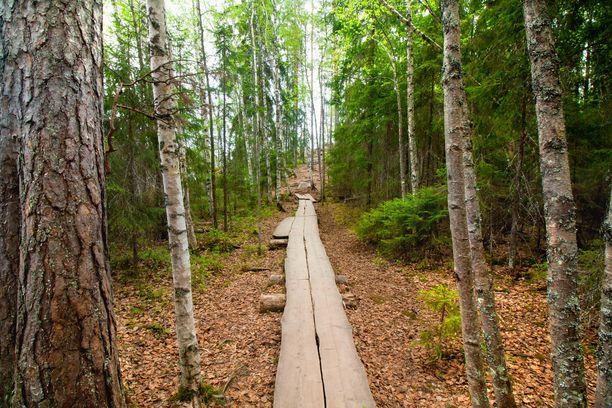 Suomessa on meneillään kova retkeilybuumi. Kuvituskuva Repoveden kansallispuistosta.