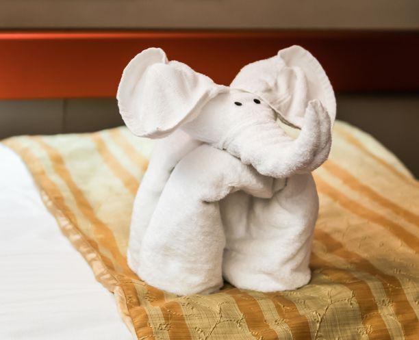 Jotkut käyttävät pyyhe-eläimissä myös irtosilmiä.