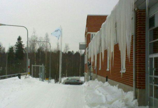 Etelä-Suomessakin saadaan nauttia näteistä jääpuikoista. Tämä kuva on Helsingin Konalasta.