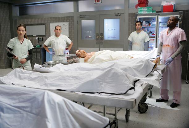 House -sarjassa näyttelivät muun muassa Olivia Wilde, Peter Jacobson, Kal Penn ja Omar Epps.