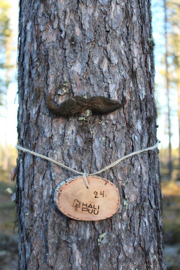 Halipuita voi tuunailla vaikkapa naavaviiksillä, linnunruokintakaulakorulla tai linnunpöntöllä.