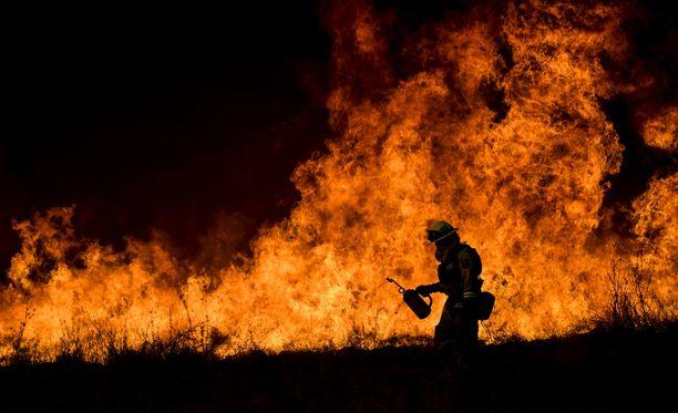 Satoja rakennuksia on tuhoutunut viidettä päivää riehuvissa paloissa.