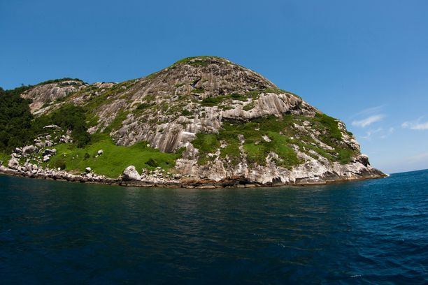 Ilha da Queimada Grandelle ei päästetä siviilejä, koska siellä asuu massoittain myrkkykäärmeitä.
