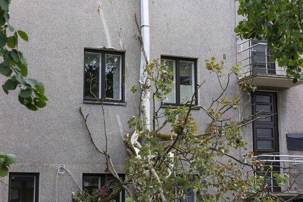 Puu kaatui seurakunnan kiinteistön päälle Kotkassa.