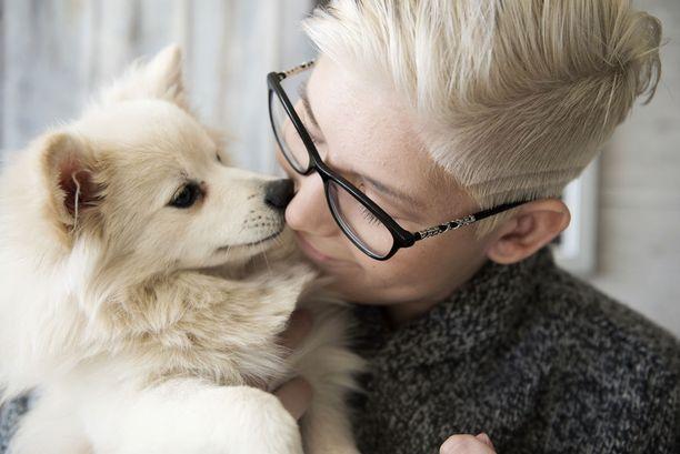 Nox-koira on Heidi Foxellin päivien piristys ja silmäterä.