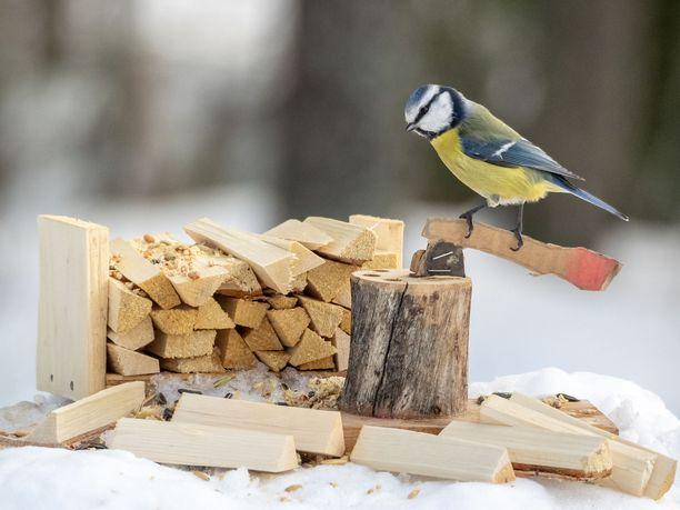 Eero Lappi saa ideoita lintulautoihin erityisesti maaseutuaiheista. Ne viehättävät häntä eniten.