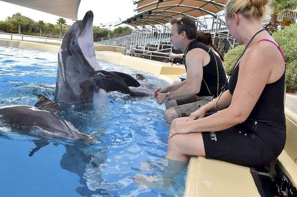 Delfiinien mukana oli aluksi myös suomalaiskouluttajia.