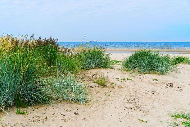 Vaikka Aegnan saari on pääasiassa metsän peitossa, löytyy siltä kunnollinen hiekkarantakin.