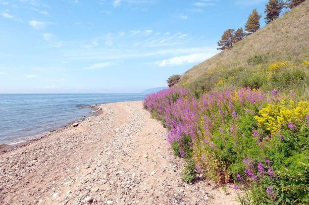 Mies puukotti vaimonsa pelastaneen henkilön humala- ja huumepäissään Baikaljärven rannalla Siperiassa. Kuvituskuva.