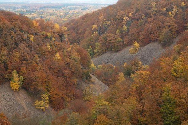 Söderåsenin kansallispuisto löytyy Etelä-Ruotsin Skånesta.