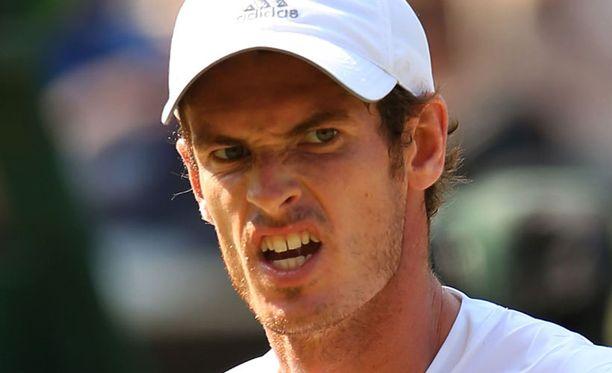 Andy Murray tippui jatkosta Cincinnatin tennisturnauksessa.