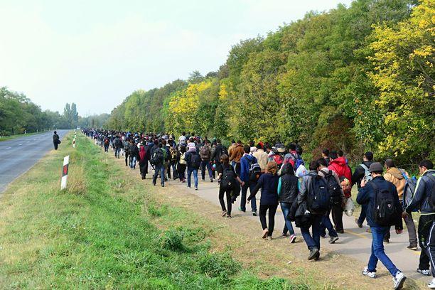 Kompakti ei tarkoita sitä, että Suomeen tulisi siirtolaisia enenevissä määrin.