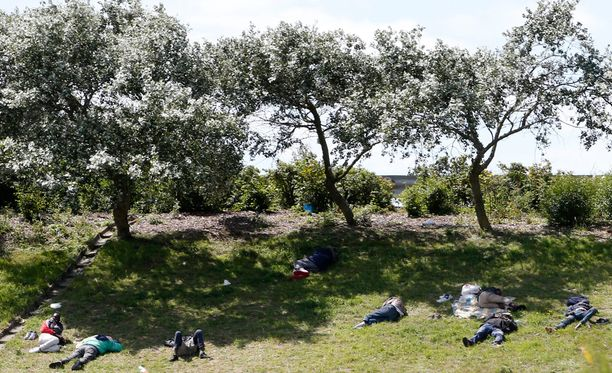 Maahanpyrkijöitä lepäsi tänään ruohikolla tien varrella lähellä Eurotunnelia.