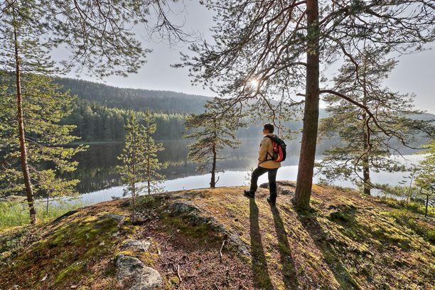 Asiantuntijaraati arvosti kansallispuistojen tarjoamia elämyksiä. Kuva Kolin kansallispuistosta.