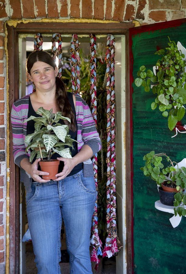 Kasviharrastaja Sini Uotisella, 37, on noin 4000 kasvia. Käsissä hänellä on kuvassa Leopoldinkukka, ovessa liisukoita.