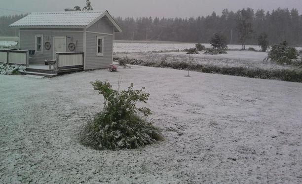 Pasi Keskisarja kuvasi pihaa Pohjois-Pohjanmaalla Nivalassa.