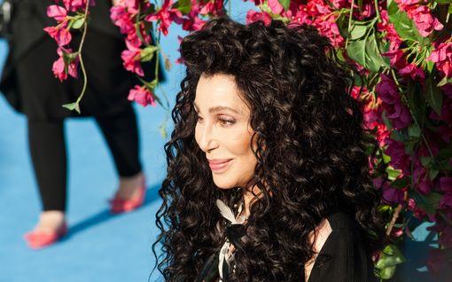Cher taistelee ostoskeskukseen teljetyn gorillan pelastamiseksi