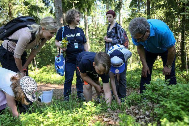 Tasavallan presidentti Sauli Niinistö tutustui Kasavuoren luontopolkuihin Espoon Keinumäen koulun oppilaiden kanssa osana Mustikka-ryhmää.