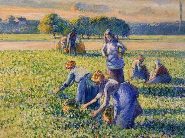 Camille Pissarro maalasi La Cueilletten vuonna 1887.