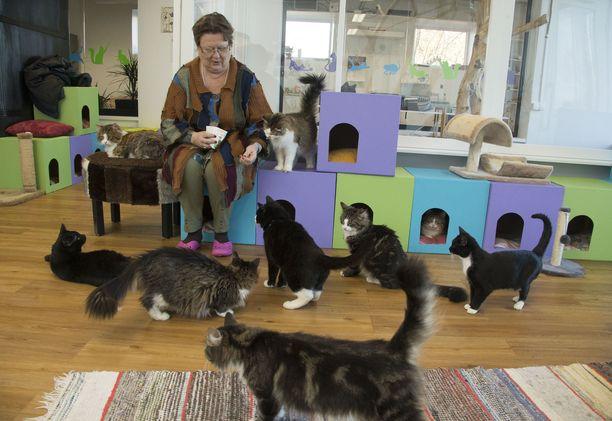 Tuula Pennasen omistautuminen eläinten hyvinvoinnille on tehnyt hänestä Saarenmaalla tunnetun hahmon.