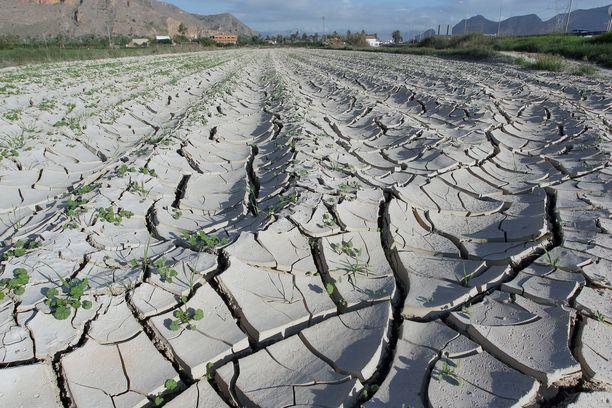 Itäisessä Espanjassa sijaitsevassa Orihuelassa näytti tältä viime lokakuussa. Kuivuus seurasi rankkasateita.