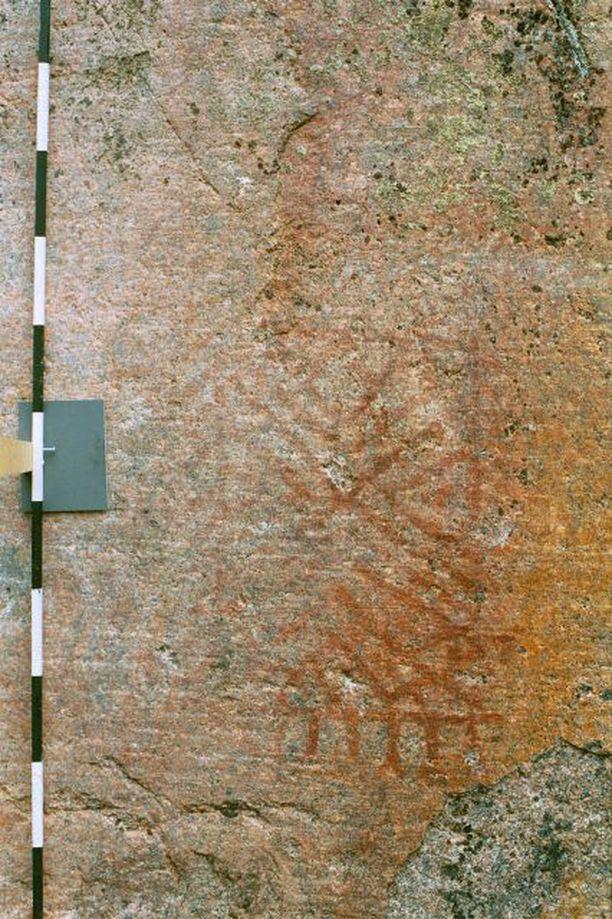Sibeliuksen löytämässä maalauksessa on verkkokuvioita.