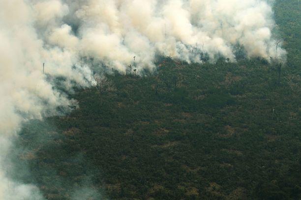 Laajojen tulipalojen sarja nelinkertaisti Amazonin päästöt vuonna 2019.